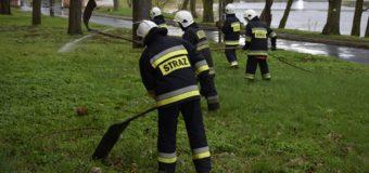 Ćwiczenia z gaszenia pożarów traw i łąk
