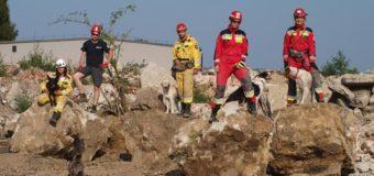 Intensywne szkolenie naszych psów poszukiwawczych.