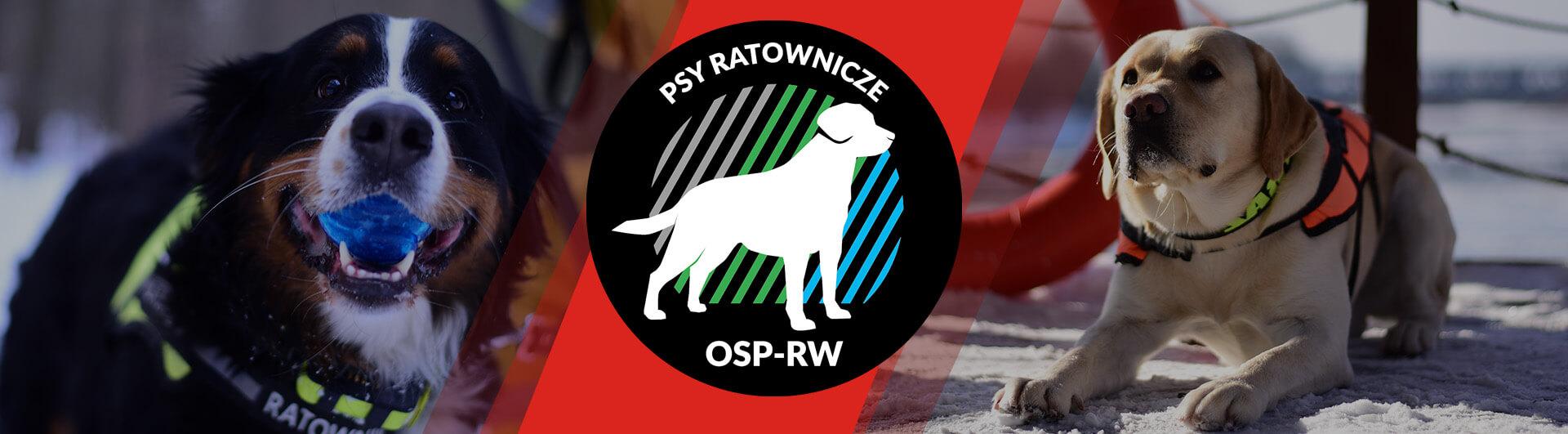 osp rw modlin twierdza ochotniczas straż pożarna ratownictwo wodne psy ratownicze